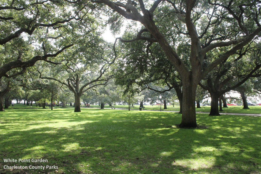 The Best Of Charleston And Sc Lowcountry 2017